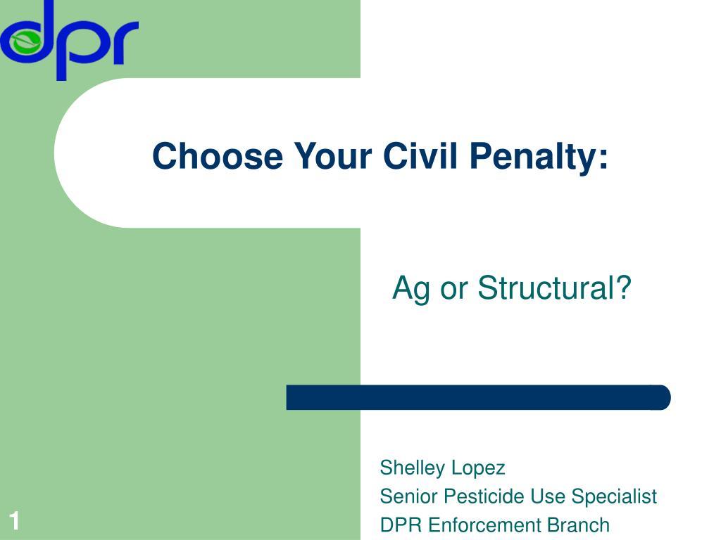 choose your civil penalty l.