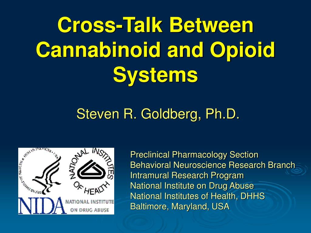 cross talk between cannabinoid and opioid systems l.