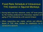 fixed ratio schedule of intravenous thc injection in squirrel monkeys