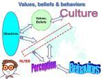 values beliefs behaviors