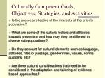 culturally competent goals objectives strategies and activities