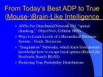 from today s best adp to true mouse brain like intelligence