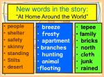 new words in the story at home around the world