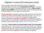 regulation of acetyl coa carboxylase activity