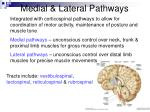 medial lateral pathways