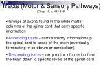 tracts motor sensory pathways chap 16 p 432 439