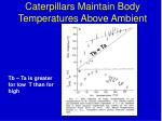 caterpillars maintain body temperatures above ambient