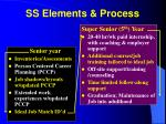 ss elements process