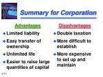 summary for corporation