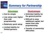 summary for partnership