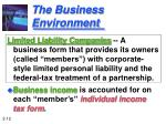 the business environment12