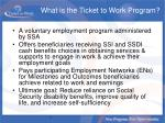 what is the ticket to work program