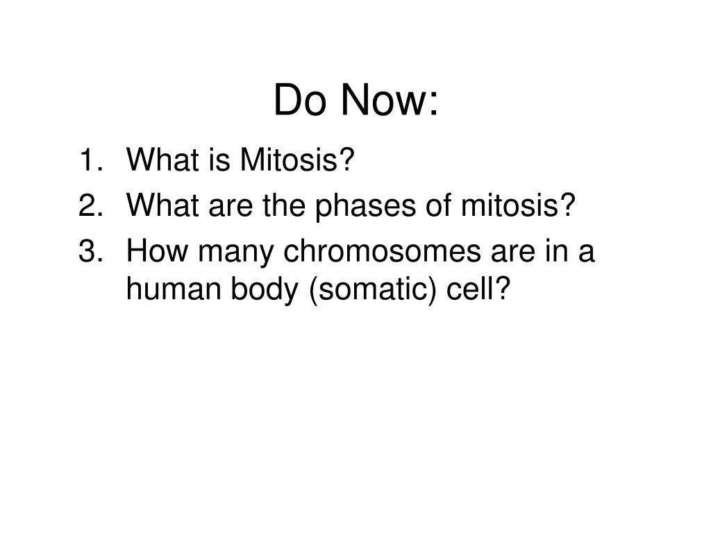do now l.