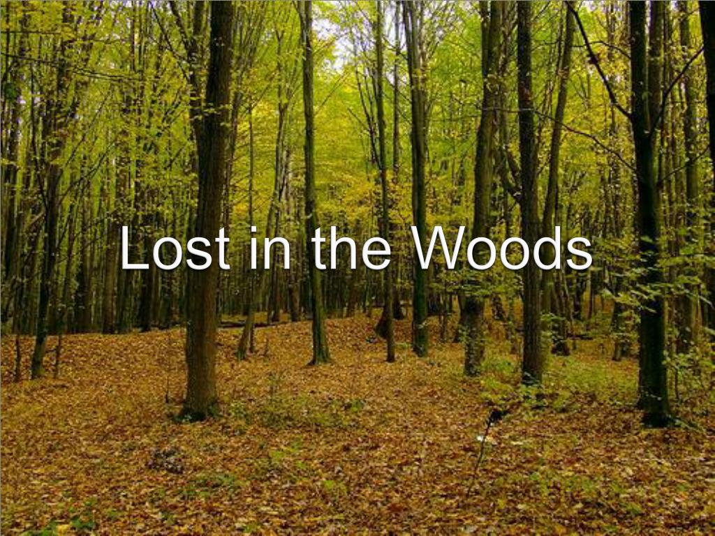 lost in the woods l.