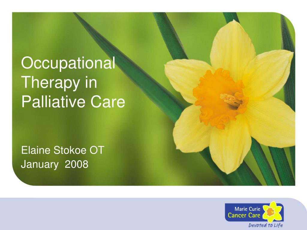 occupational therapy in palliative care l.