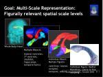 goal multi scale representation figurally relevant spatial scale levels