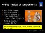 neuropathology of schizophrenia
