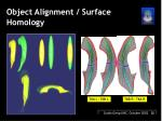 object alignment surface homology