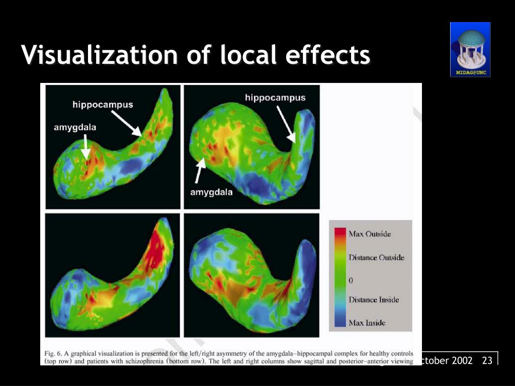Visualization of local effects