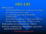 ddx uri17
