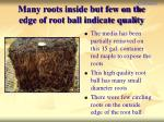 many roots inside but few on the edge of root ball indicate quality