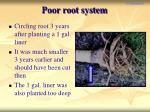 poor root system