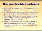 root growth in fabric containers
