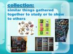 collection similar things gathered together to study or to show to others