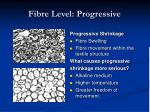 fibre level progressive