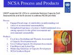 ncsa process and products