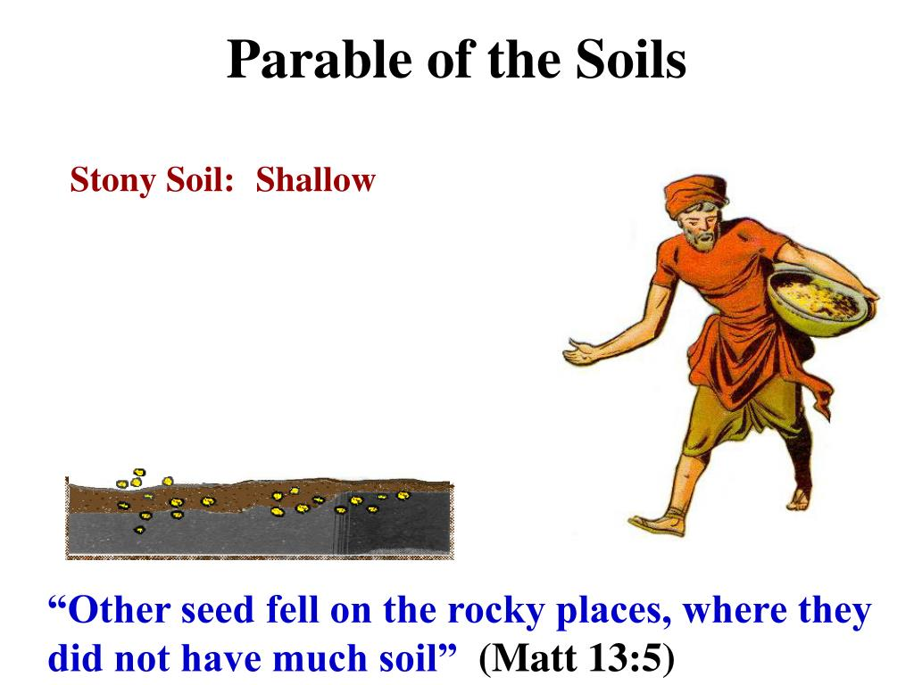 parable of the soils l.