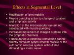effects at segmental level
