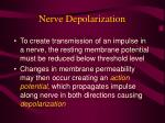 nerve depolarization