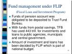fund management under flip fiscal loan and investment program