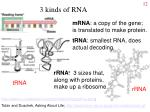3 kinds of rna