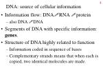 dna source of cellular information