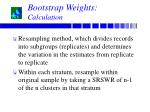 bootstrap weights calculation
