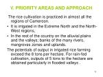 v priority areas and approach