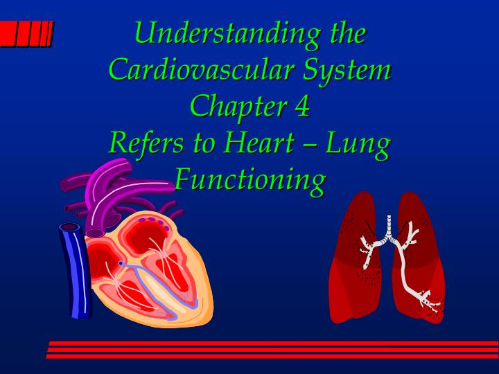 understanding the cardiovascular system chapter 4 refers to heart lung functioning n.