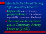 what is so bad about having high cholesterol levels