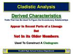 cladistic analysis8