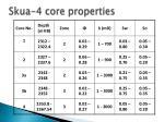 skua 4 core properties