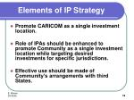elements of ip strategy