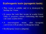 erythrogenic toxin pyrogenic toxin