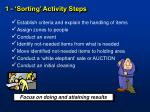 1 sorting activity steps