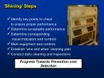 shining steps