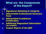 what are the components of the report