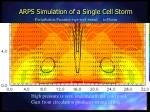 arps simulation of a single cell storm86