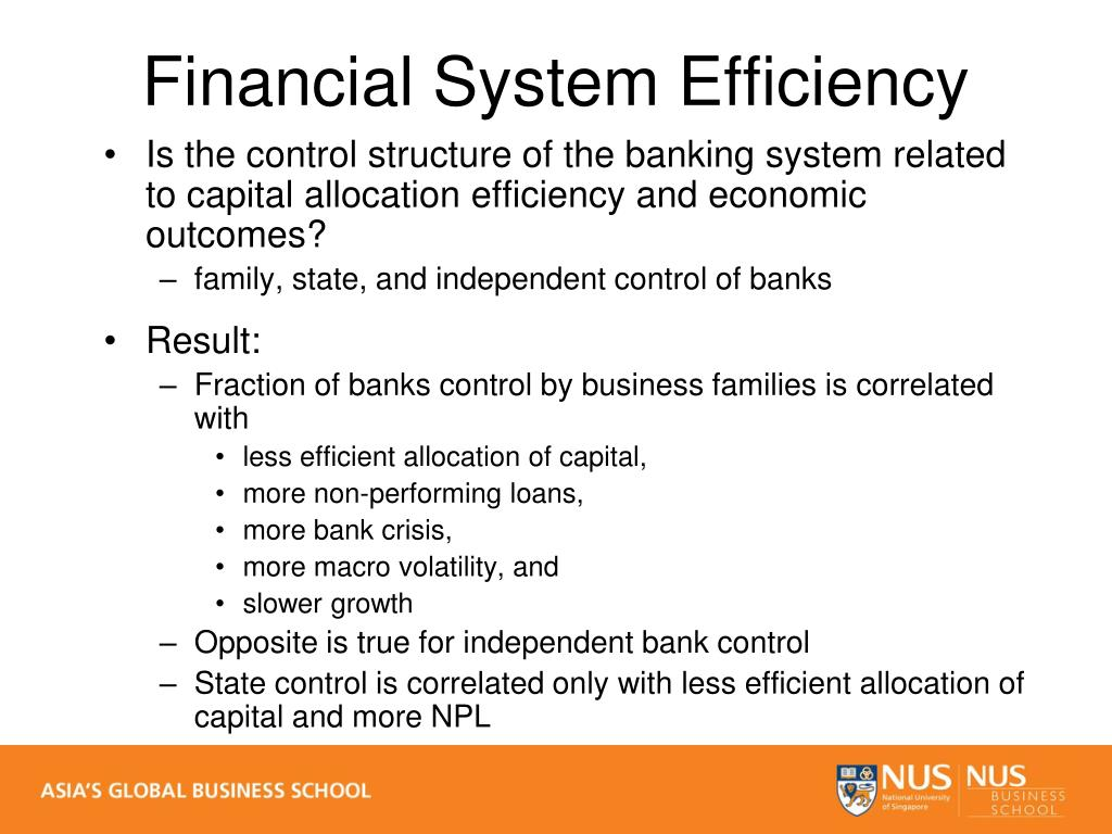 Is the control structure of the banking system related to capital allocation efficiency and economic outcomes?