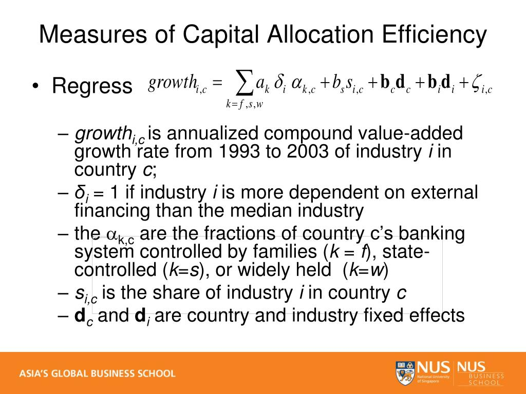 Measures of Capital Allocation Efficiency